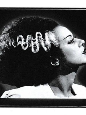 Dr Phibes Vinyl Sticker